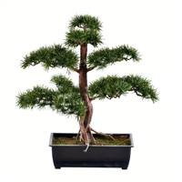 "19"" Potted Guest Greeting Bonsai Pine"