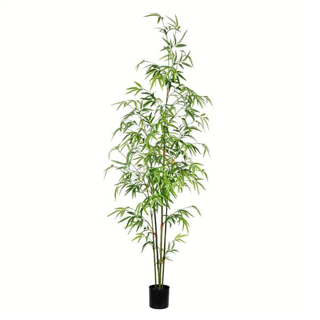 5' Potted Mini Bamboo Tree 819 Leaves