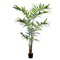 7' Potted Kentia Palm 150 Leaves