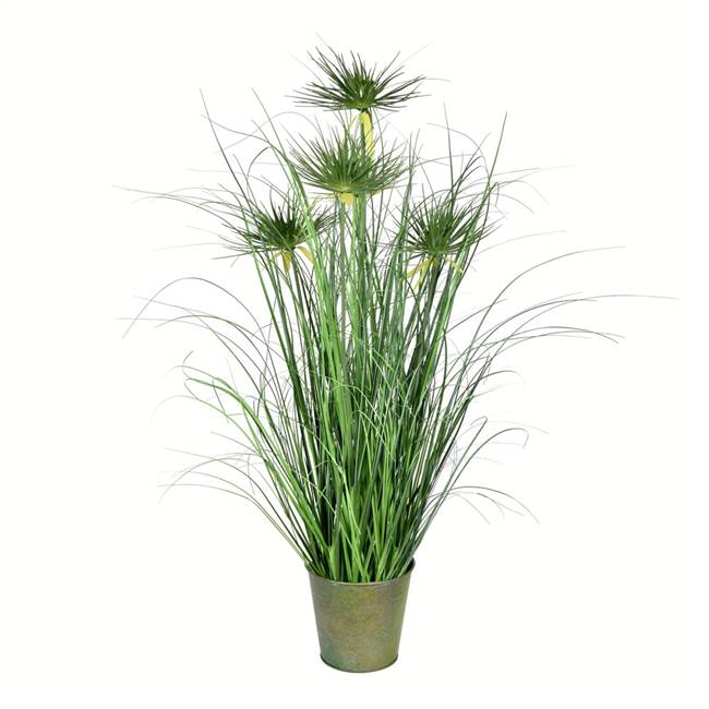 "36"" Green Cyperus Grass In Iron Pot"