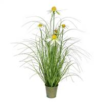 "24"" Green Daisy Grass In Iron Pot"