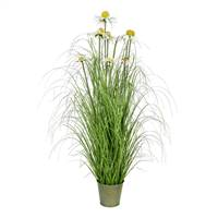 "37"" Green Daisy Grass In Iron Pot"