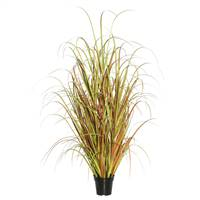 "36"" Mixed Brown Grass in Pot"