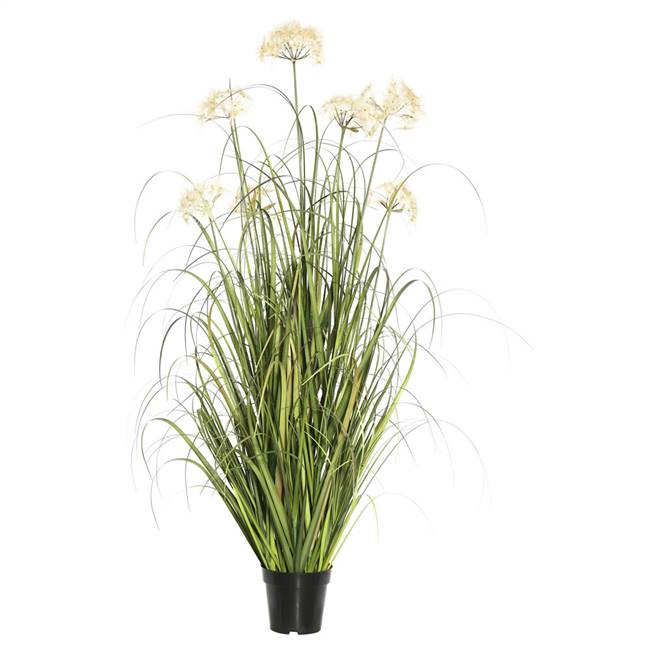 "36"" Dandelion Grass in Pot"