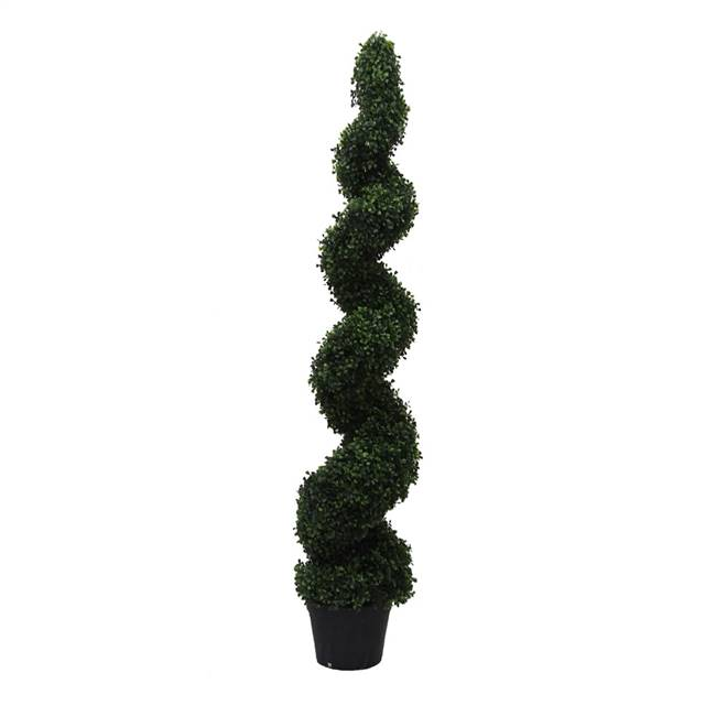 5' Boxwood Spiral In Pot (UV)