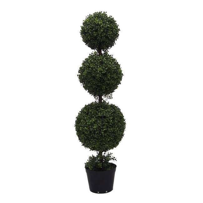 4' IFR Boxwood Triple Ball In Pot