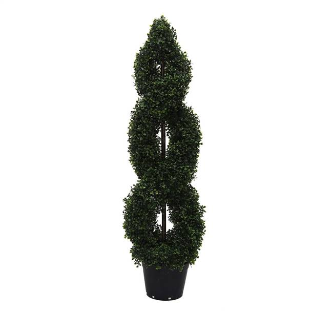 4' IFR Boxwood Double Spiral In Pot
