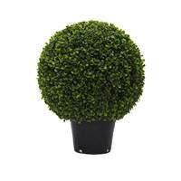 "20"" Boxwood Ball In Pot UV"