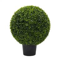 "24"" Boxwood Ball In Pot UV"