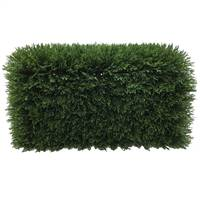 "L24""xW12""xH12"" Green Cedar Hedge UV"