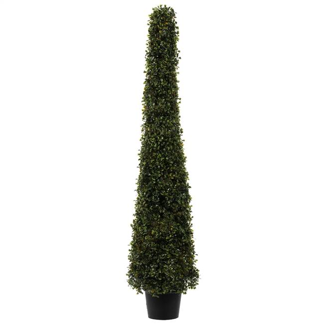 4' Potted Boxwood Cone UV
