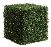 "20"" Boxwood Cube 100 WmWht LED UV"