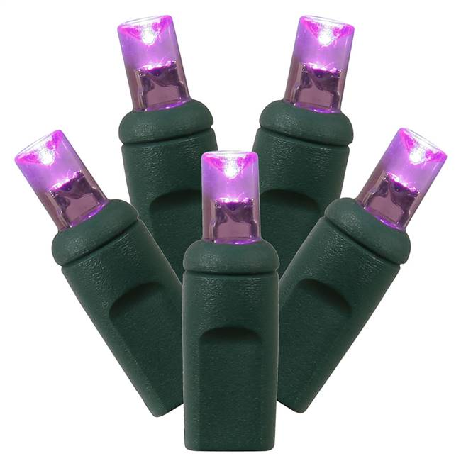 "50Lt LED Purple/GW WA EC Set 1Pc 6""x25'L"