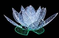 5' x 3' LED 3D Lotus Flower