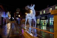 10' x 2.5' x 7.5' LED 3D Prancing Deer