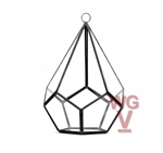 "Geometric Glass Terrarium, Undecahedron Tear drop, Black Frame - Width: 5.5"", Height: 8"""