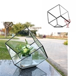 "Geometric Glass Terrarium, Heptahedron, Tilted Square, Black Frame - Width: 11.5"", Height: 12"" (8"" Square Cube Tilted)"