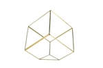 "Geometric Glass Terrarium, Heptahedron, Tilted Square, Gold Frame - Width: 11.5"", Height: 12"" (8"" Square Cube Tilted)"