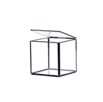 "Geometric Glass Terrarium, Hexahedron, Cube Shape, Black Frame - Width: 5"", Height: 5"""