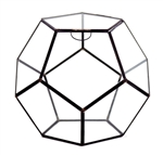 "Geometric Glass Terrarium, Dodecahedron, Black Frame, One of the Facet Opens - Width: 11"", Height: 9"""