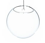 "Clear Half-Round Wall Hanging Terrarium. Diameter: 6"". Thickness: 4"""