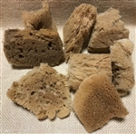 Sea Sponge Chunk Medium 3 Pack