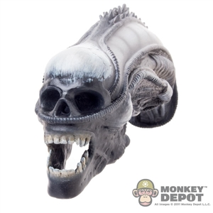 Head: Black Box Alien Skull Model