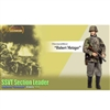 "Boxed Figure: Dragon ""Hubert Metzger"" (Obersturmführer) - SSVT Section Leader (70799)"