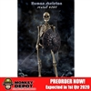 COO Models The Human Skeleton (Diecast Alloy) (CM-BS011)