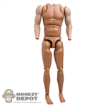 Figure: DiD Muscle Arm Body w/Gloved Hand Set