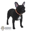 Dog: DiD Black French Bulldog