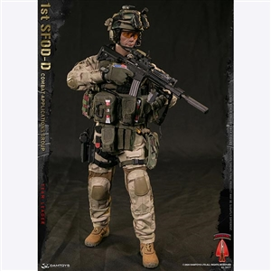 DamToys 1st SFOD-D Combat Applications Group Team Leader (78077)