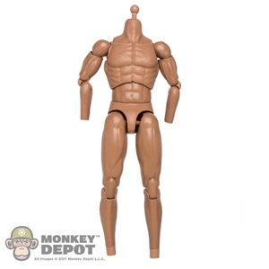 Figure: DamToys Muscle Body w/Neck Post