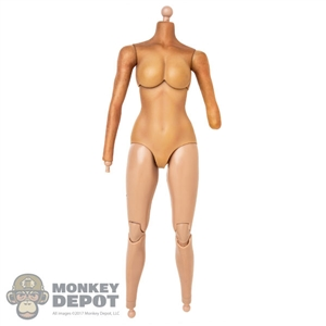 Figure: DamToys Female Seamless Body w/Amputated Left Arm