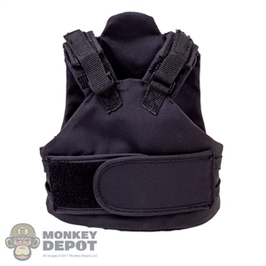 Vest: DamToys TP1E Body Armor