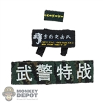 Insignia: DamToys Chinese People's Armed Police Force Snow Leopard Commando Unit Team Leader Patch Set
