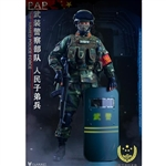 Flagset Chinese People's Armed Police Force (F73028)