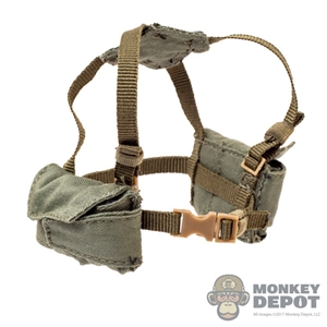 Harness: Flagset Female Belt & Harness w/Pouches