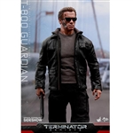 Boxed Figure: Hot Toys T-800 Guardian (902480)