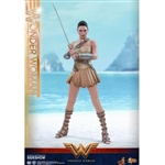 Boxed Figure: Hot Toys Wonder Woman Training Armor Version (903056)