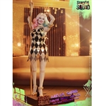 Boxed Figure: Hot Toys Harley Quinn Dancer Dress Version (903185)