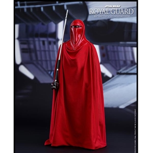 Boxed Figure: Hot Toys Star Wars Return of The Jedi Royal Guard (902996)