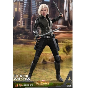 Boxed Figure: Hot Toys Avengers: Infinity War - Black Widow (903470)