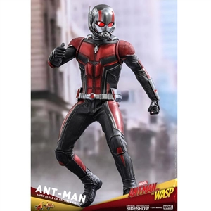Boxed Figure: Hot Toys Ant-Man & The Wasp - Ant-Man (903697)