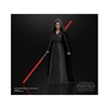 Action Figure: Hasbro 6 inch Star Wars Black Series Rey (Dark Side Vision)