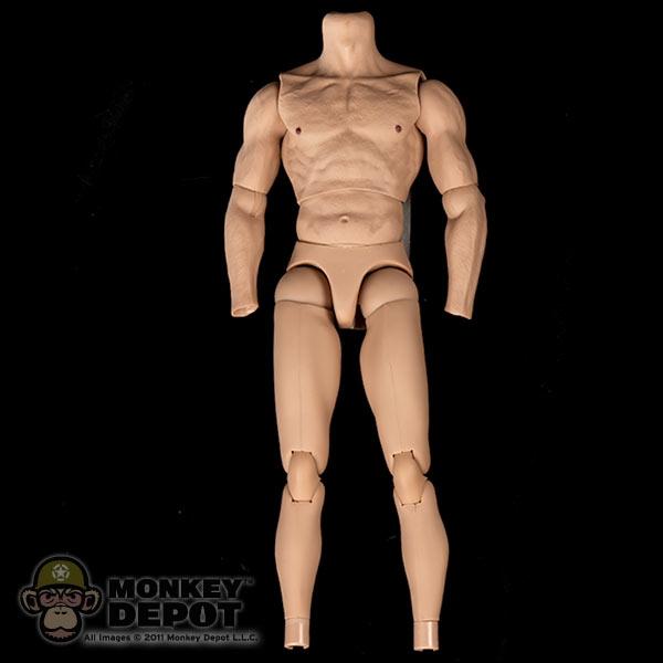 Hot Toys True Type Body 27