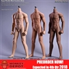 Boxed Figure: Jiaou Doll Seamless Action Figure Male Body w/Detachable Foot (JOQ-JOK-11C)