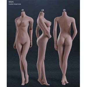 Boxed Figure: TBLeague Seamless Body in Suntan/Middle Breast (PL-MB2015S02A)