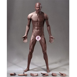 Boxed Figure: TBLeague Super Flexible Male Seamless Body-M36 (PL2018-M36)