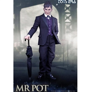 Boxed Figure: Toys Era The Mr Pot (TE-019)
